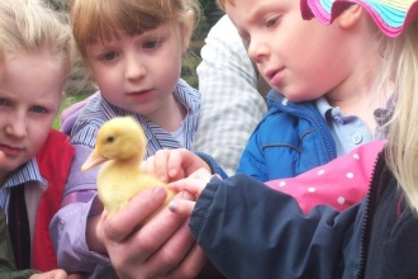 Things to do with kids Shropshire