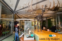 Attractions in Leeds
