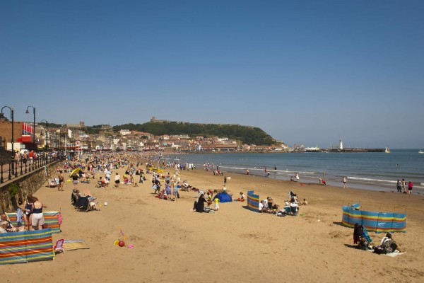 Kids Days Out Scarborough