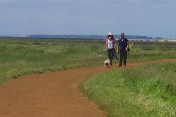 Walks with kids Norfolk
