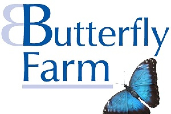 Butterflys Galore Stratford Upon Avon