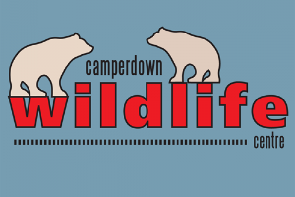 Camperdown Wildlife Scotland