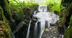 Canonteign Falls - A great place to go