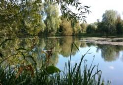 Beautiful Bedfordshire Park
