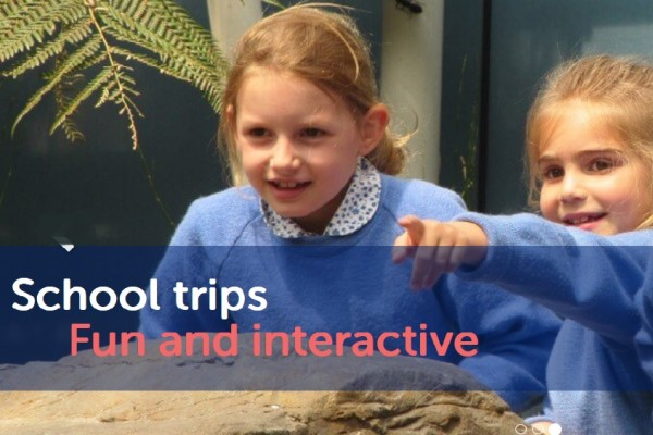 Image of kids enjoying School trip at Bristol Aquarium