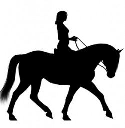 Horseriding disabled Liverpool