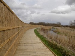 Nature reserve in Norfolk