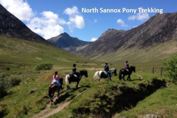 North Sannox Pony Trekking - Brodick