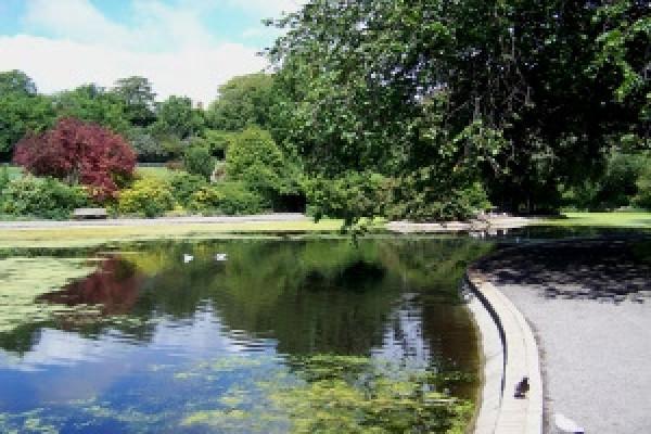 Wildlife pond Queens Park Brighton
