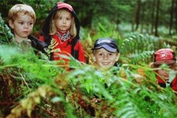 Survival Fun at Sunrise Bushcraft on Kids Days Out