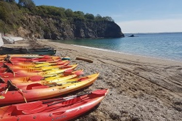 Things to do near St Austell