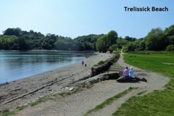 Trelissick Gardens and Walks - National Trust