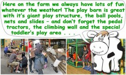 Windmill Animal Farm - Burscough