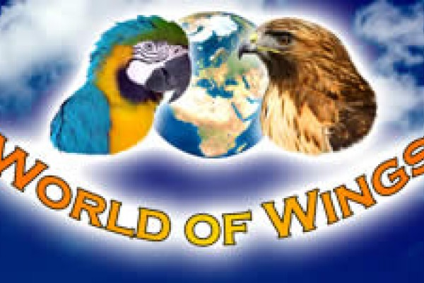 World of Wings - Cumbernauld